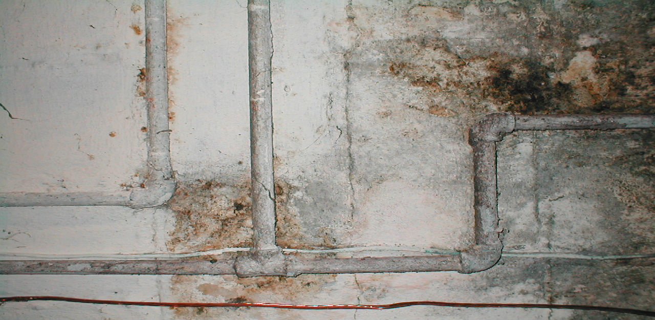 5 Risks of Buying an Older Home Structural Integrity